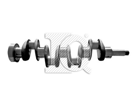 IQ3050 - 3110995R93 - Crankshafts