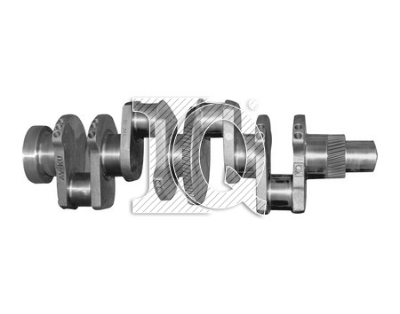 IQ3053 - 3131982R94 - Crankshafts