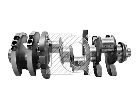 IQ3607 - 51021017599 - Crankshafts
